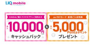 「au Payカード新規ご入会特典」